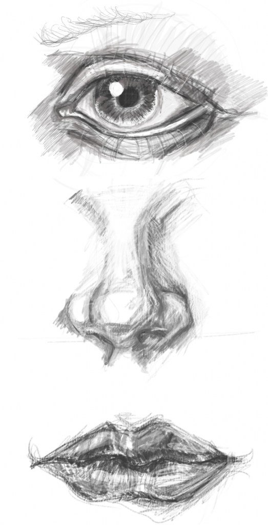 drawing-face-features2